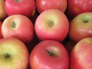"Купить Яблоки, сорт  ""Айдаред"""