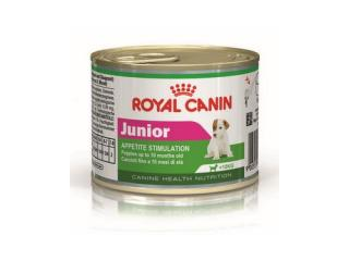 Купить Royal Canin Junior Влажный корм для собак