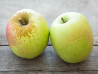 Купить Яблоки сорта Муцу (mutsu) ОПТ