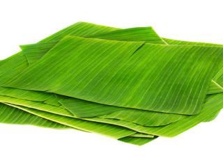 Купить Листья банана, Banana leaf
