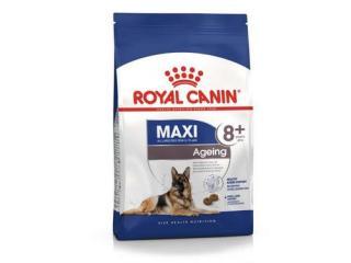 Купить Royal Canin Maxi Ageing 8 - Сухой корм для собак крупных пород 15 кг