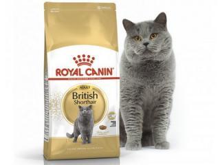 Купить ROYAL CANIN British Shorthair - Полнорационный сухой корм для взрослых кошек породы британская короткошерстная в возрасте старше 12 месяцев 2кг