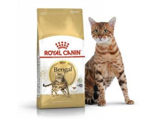 Купить Royal Canin Bengal Adult - Сухой корм с птицей для кошек бенгальской породы