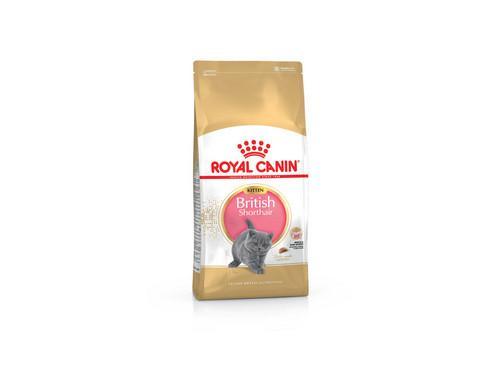 Купить Royal Canin Kitten British Shorthair - Сухой корм с птицей для британских короткошерстных котят
