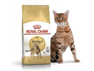 Купить Royal Canin Bengal Adult - Сухой корм с птицей для кошек бенгальской породы (копия)