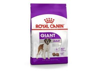 Купить Royal Canin Giant Adult - Сухой корм для взрослых собак больших размеров 4,0 кг