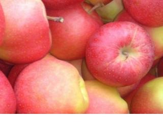 Купить Яблоки сорта Гала