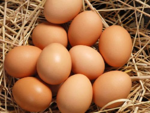 Купить Яйца от молоденьких курочек