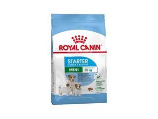 Купить Royal Canin Mini Starter Mother & Babydog сухой корм для щенков до 2-х месяцев, беременных и кормящих собак.
