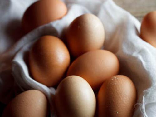 Купить Яйца куриные отборные