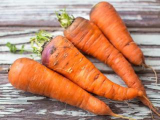 """Купить Морковь, сорт """"Каротель"""""""