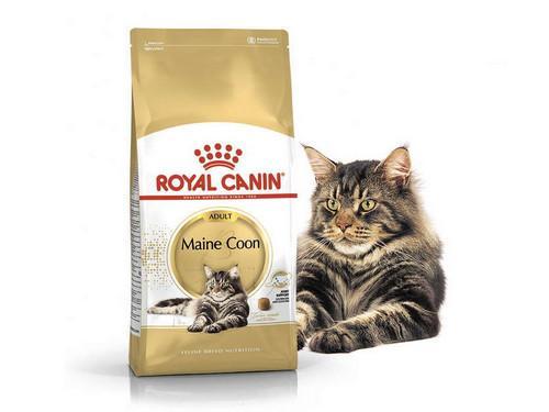 Купить Royal Canin  Maine Coon Adult - Сухой корм с птицей для взрослых кошек породы Мейн кун 0,4 кг