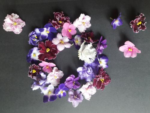 Купить Съедобные цветы ассорти