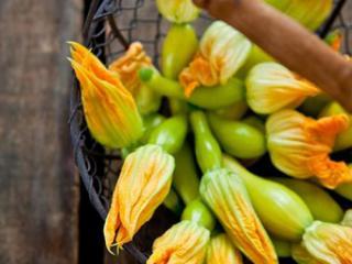 Купить Цветы цуккини вместе в овощем