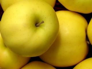 """Купить Яблоки, сорт """"Голден"""" ОПТ"""