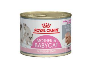 Купить Royal Canin Babycat Instinctive