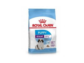 Купить Royal Canin Giant Puppy - Сухой корм для щенков крупных пород 1,0 кг