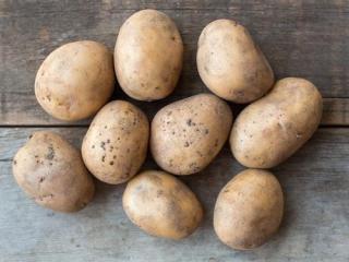 Купить Картофель домашний белый ОПТ